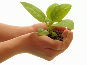 How to nurture leads with your business blog